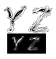 Capital letters Y and Z vector image vector image