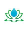 lotus and water drop logo image vector image