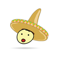 sombrero hat on head vector image