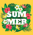 summer times vector image