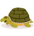 cartoon cute turtle character vector image