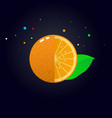 juicy orange slice vector image