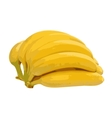 Bunch of bananas isolated on white background vector image vector image