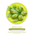 branch with green olives lying on a plate vector image vector image
