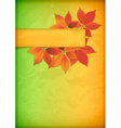 Autumn leaves on old crumpled paper with banner vector image