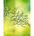 Tulip garden or field in spring EPS 10 vector image