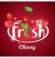 cherry juice with berries vector image