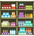 Pharmacy shelves with pills and drugs medicine vector image