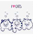 three kittens vector image vector image
