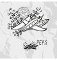 Hand drawn peas vector image