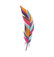 colored curved bright bird feather vector image
