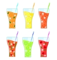 Fruit Lemonades Set vector image