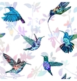 Hummingbird seamless pattern Hand drawn tropical vector image