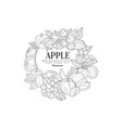 apple set vintage sketch vector image