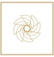 Gold mandala or geometrical element for decoration vector image