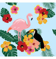 Flamingo and toucan vector image