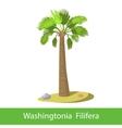 Washingtonia Filifera cartoon tree vector image
