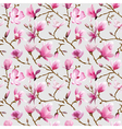 Magnolia Flowers Background vector image