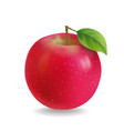 Red apple with leaf realistic vector image