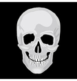 scull human vector image vector image