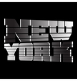 T shirt New York vector image