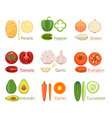 Set Of Fresh Vegetables Icon vector image