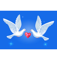 Soaring doves pair with passionate heart vector image