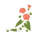 Beautiful corner floral arrangement vector image