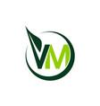 green project solution letter v m vector image