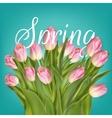Spring Tulip Flowers over white EPS 10 vector image