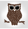 owl image vector image vector image