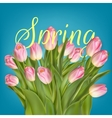 Spring background template EPS 10 vector image