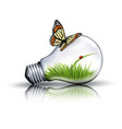 Eco light bulb with grass a ladybug and a vector image