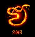 card with fire snake on black background vector image vector image