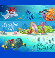 cartoon colorful sea animals horizontal banners vector image