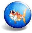 Fish swimming on round badge vector image