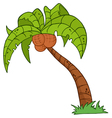 cartoon palm three vector image vector image