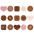 a set of assorted chocolate icons vector image