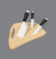 kitchen knife isolated vector image