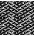 An elegant black and white pattern vector image vector image