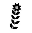 flower leaves decoration foliage nature icon vector image