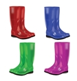 set of colorful rubber boots vector image