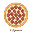 round hot delicious tasty pizza vector image