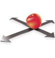 apple on the crossroad vector image vector image