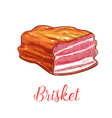 brisket meat sketch isolated icon vector image vector image