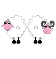 sheep and ram cartoon art vector image vector image