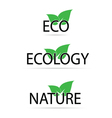 eco sign with green leaf vector image