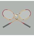 Badminton rackets and shuttlecock vector image