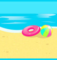 beach ball sea vector image