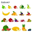 Healthy Eating Concept Fruit and Slices on White vector image